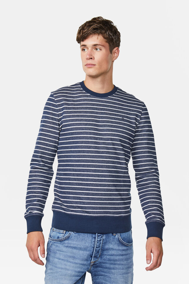 Heren gestreepte sweater Marineblauw